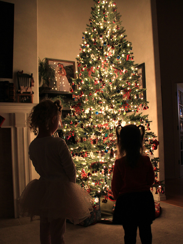 Christmas tree and children silhouette