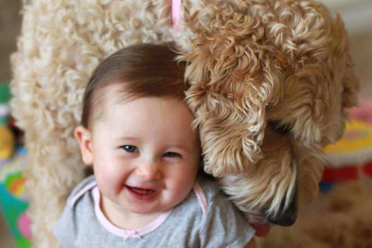 Baby Puppy Love With Baby #2